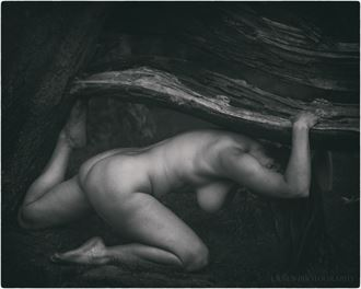 i ll tear down your playhouse artistic nude photo by photographer lanes photography