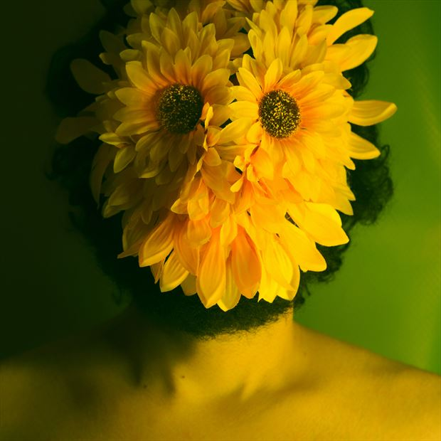 i love life sunflower man rmx cover art surreal photo by model cosmopolitano