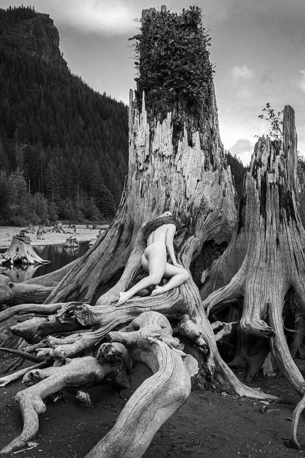 in nature artistic nude photo by model morganagreen