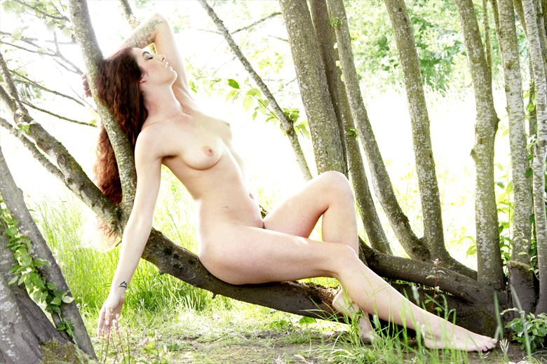 in the grove Artistic Nude Photo by Photographer AEPhotography