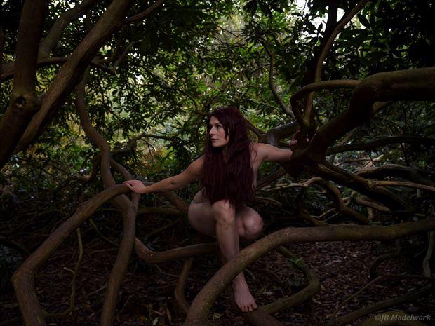 in the wild bikini photo by photographer jb modelwork