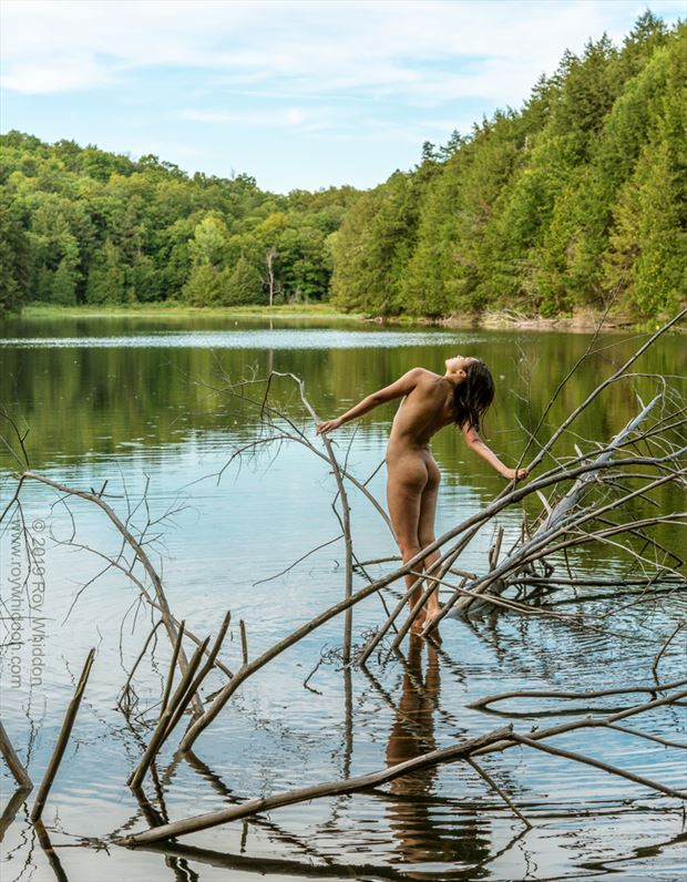 invocation to nature artistic nude photo by photographer roy whiddon