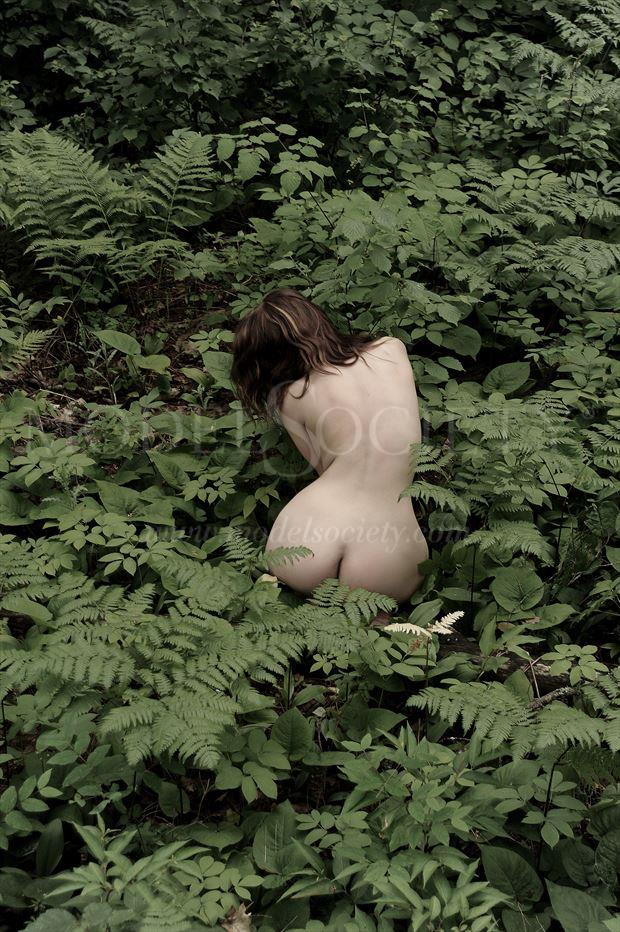 itasca state park mn artistic nude photo by photographer ray valentine