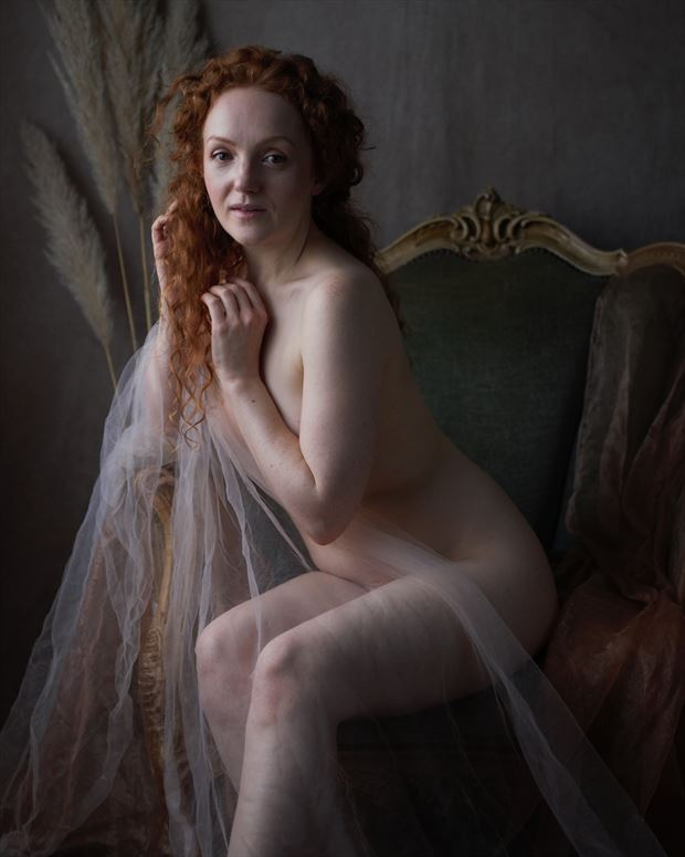 ivory flame natural light photo by photographer greyroamer photo