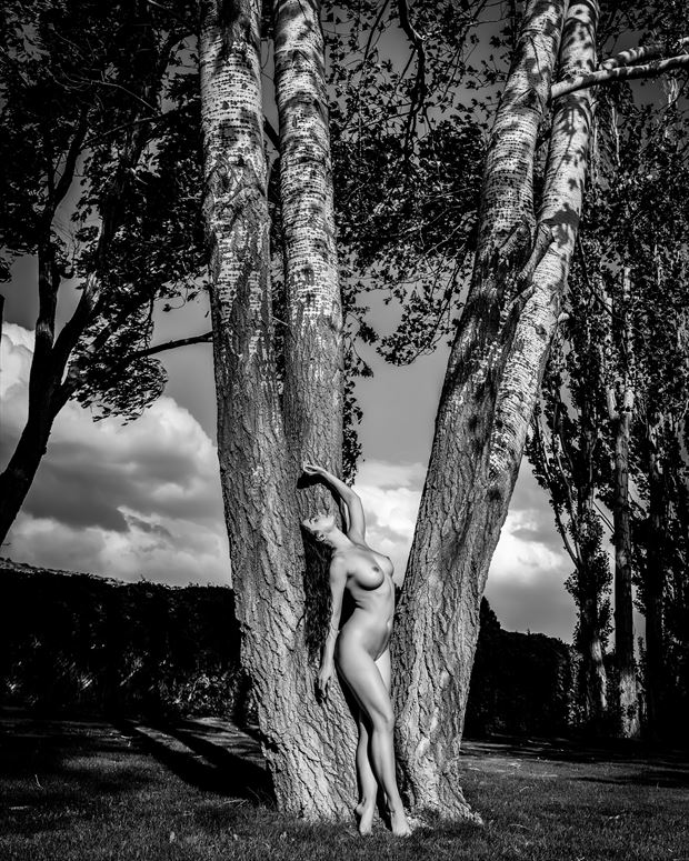 jewels and trees artistic nude photo by photographer robert m bennett