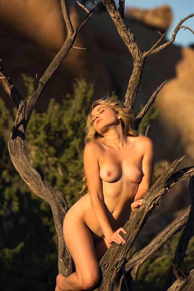 joshua tree artistic nude photo by model missmissy