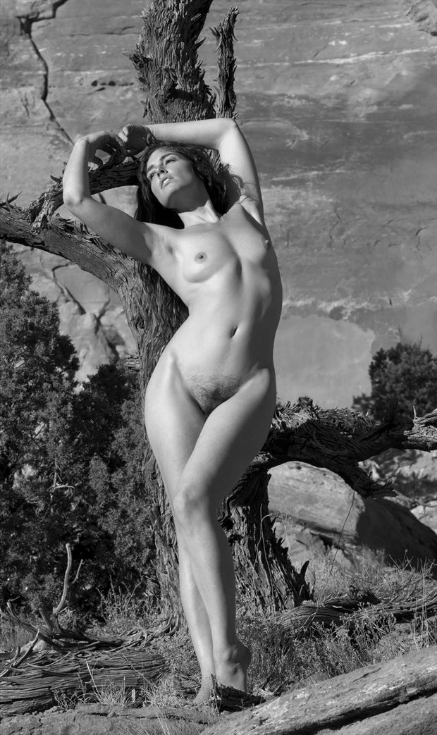 juniper forgotten figure study photo by photographer eric lowenberg