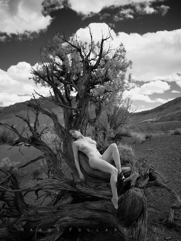 just resting artistic nude photo by photographer shootist