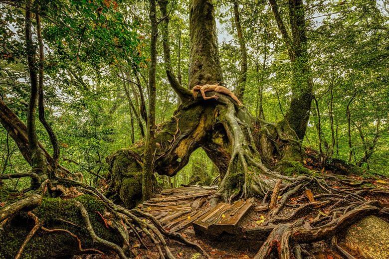 kurugi cedar union artistic nude photo by photographer treegirl