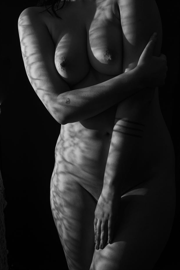 lace shadow sensual artwork by photographer gsphotoguy