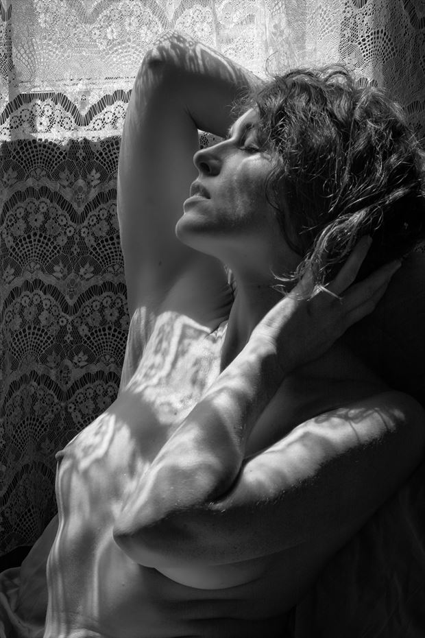 lace shadows artistic nude photo by photographer philip turner
