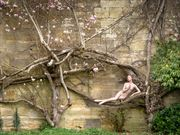 lady of the magnolias artistic nude photo by photographer paul mason