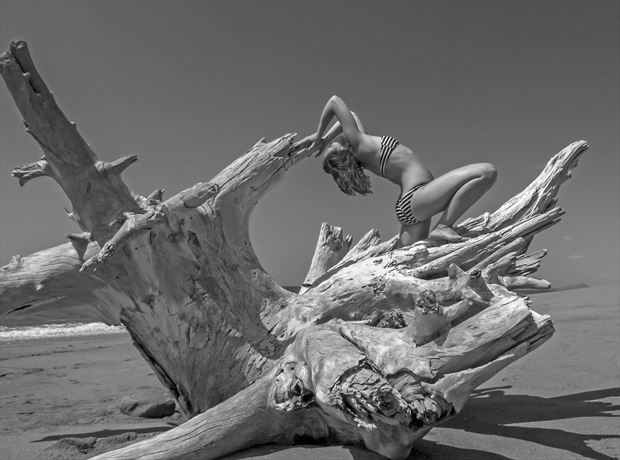lauren with driftwood asuchillo nicaragua 2017 bikini photo by photographer scott ryder