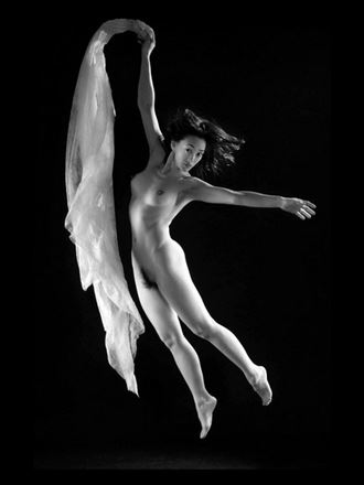 le tulle blanc 7 artistic nude photo by photographer dick