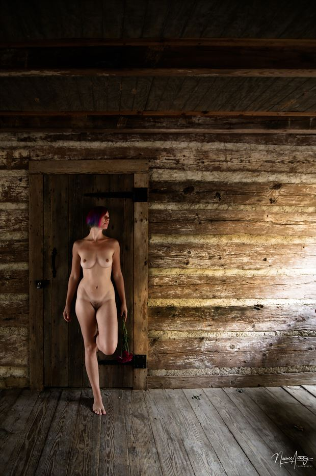 light in the cabin artistic nude photo by model polybookworm