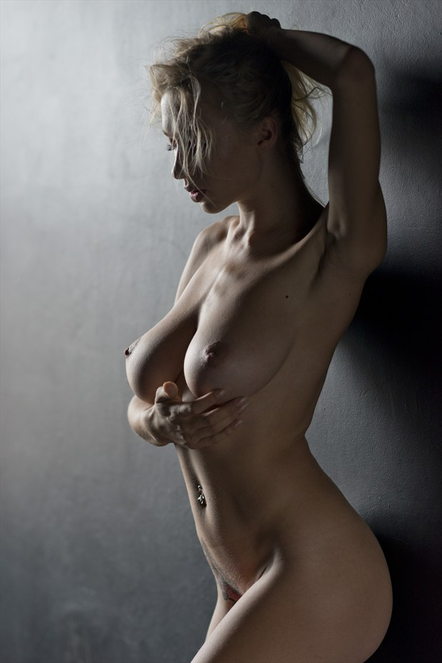 light touch artistic nude artwork by photographer alan h bruce