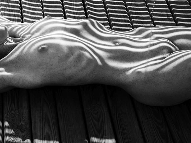 lignes d ombres 2 artistic nude photo by photographer dick
