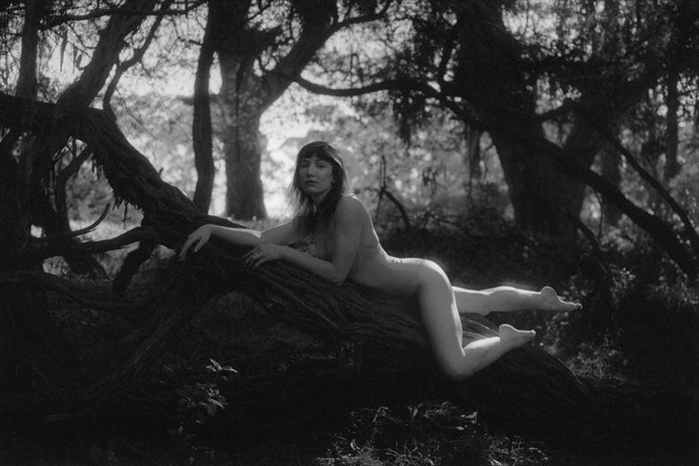 lingerie nature photo by photographer atzachgold