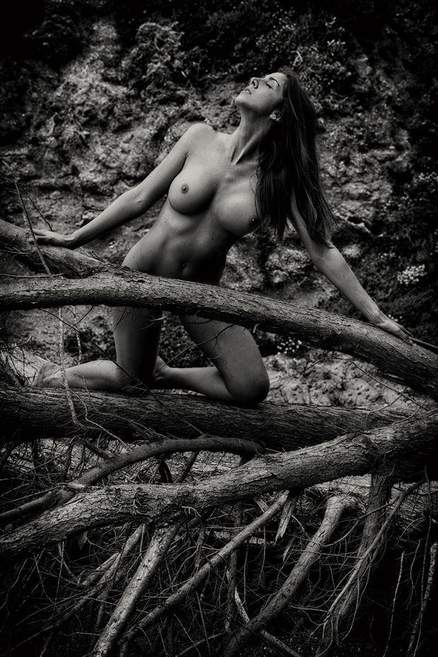 log jam artistic nude photo by photographer philip turner