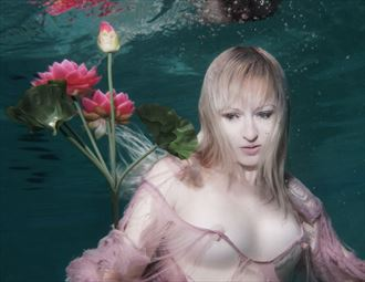 lotus artistic nude photo by photographer h2wu photo