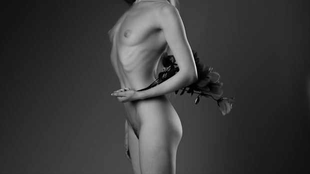 lulu artistic nude photo by photographer andyd10