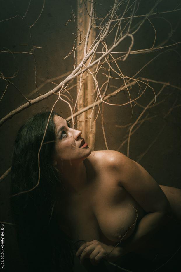 luz 4 artistic nude photo by photographer rafael ugueto photography