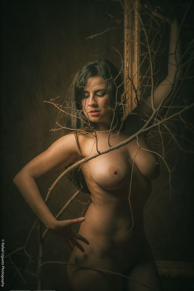luz artistic nude photo by photographer rafael ugueto photography
