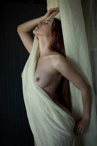 mallory sheer artistic nude photo by photographer dpdodson