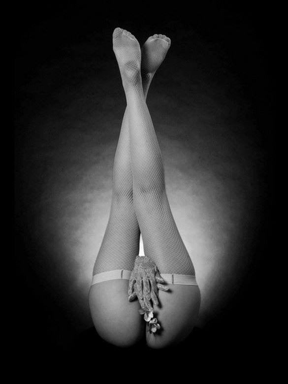 mes bas filet blancs 1 artistic nude photo by photographer dick