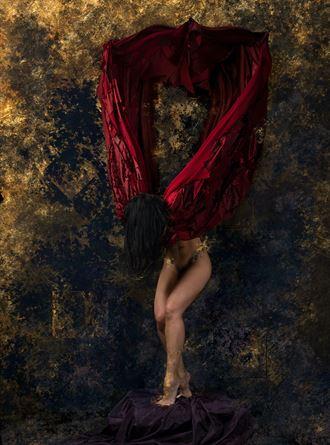 midnight dove artistic nude artwork by photographer jasonmatias