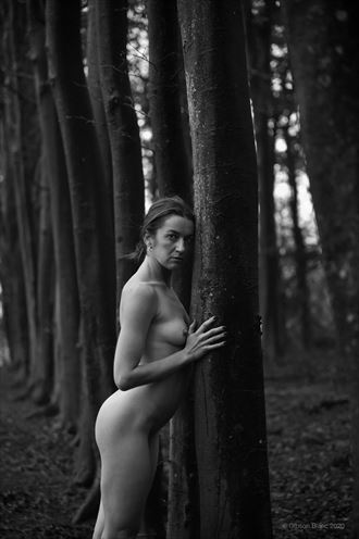 miss blue artistic nude photo by photographer gibson