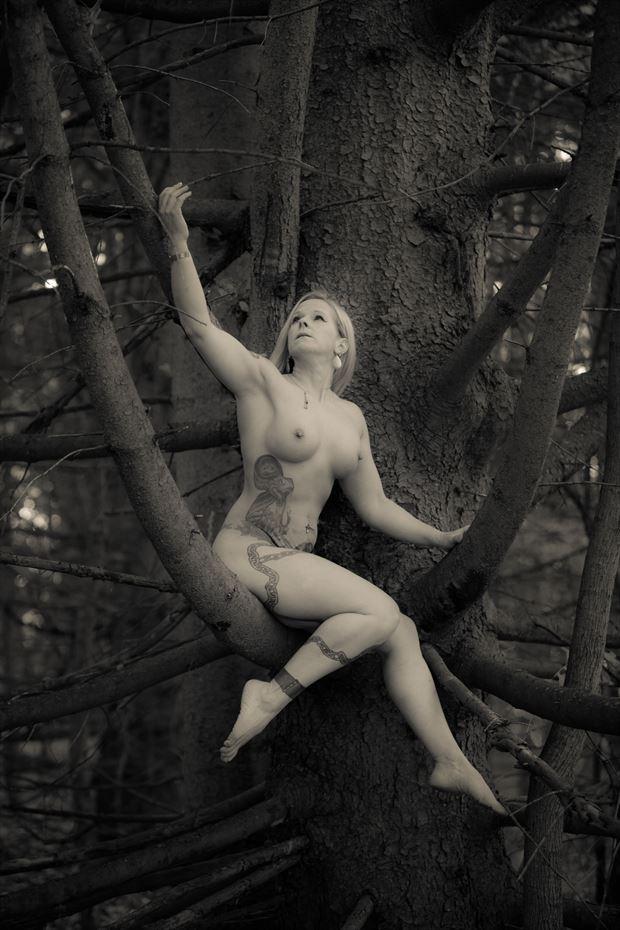 mold into my tree tattoos artwork by model dianawonderwoman2019