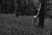 mono bluebells artistic nude photo by photographer gibson