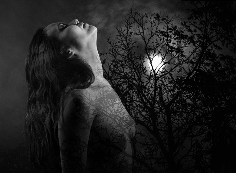 moonlit maiden artistic nude photo by photographer excelsior