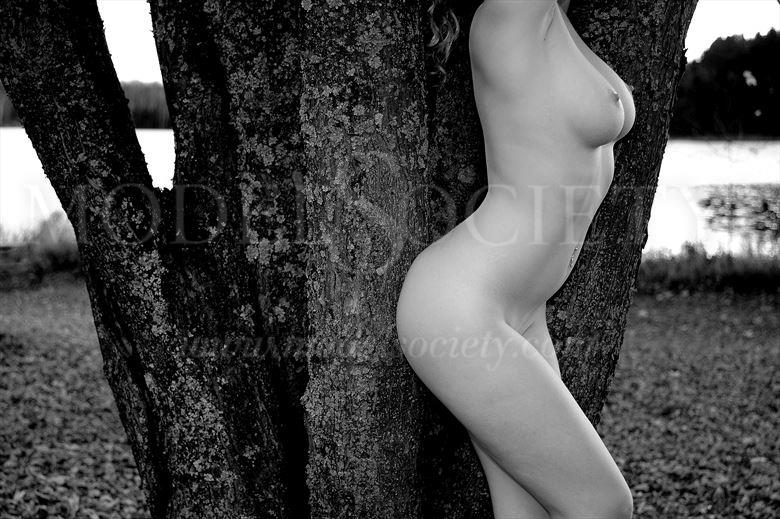 moose lake state park mn artistic nude photo by photographer ray valentine