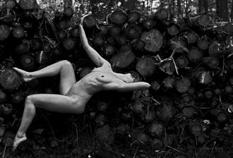more logs artistic nude photo by photographer gibson