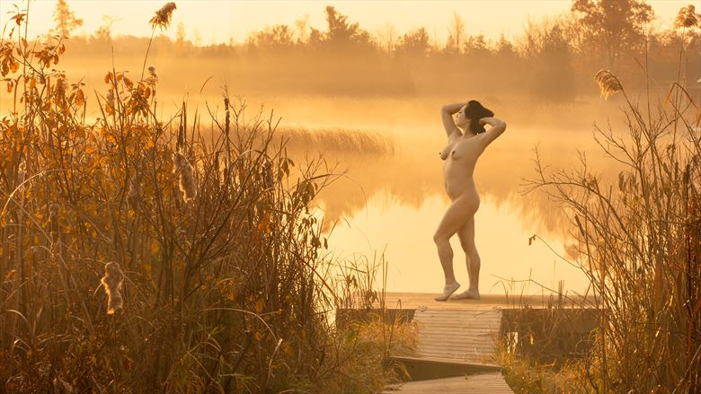 morning glory artistic nude photo by photographer johnjanklet
