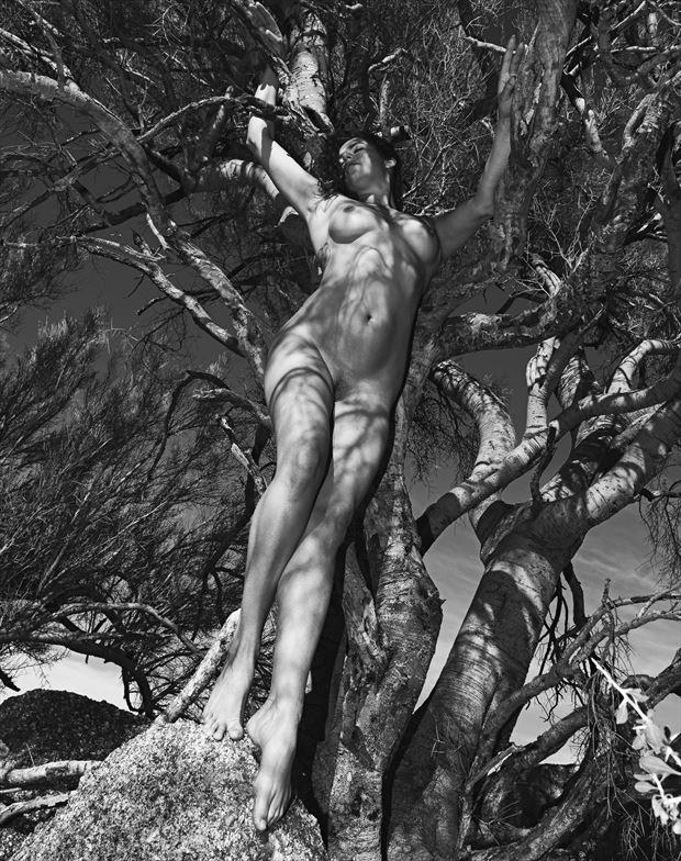 mujer tierra artistic nude artwork by photographer juanlozaphotography