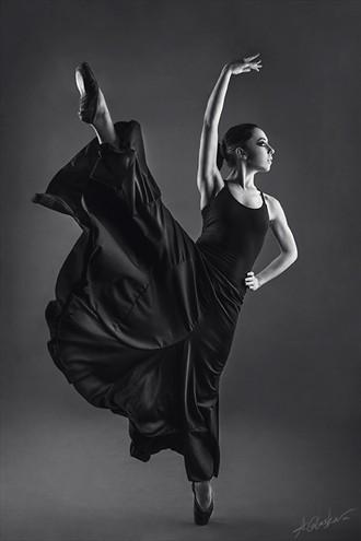 my swan grace Studio Lighting Photo by Photographer Antonia Glaskova