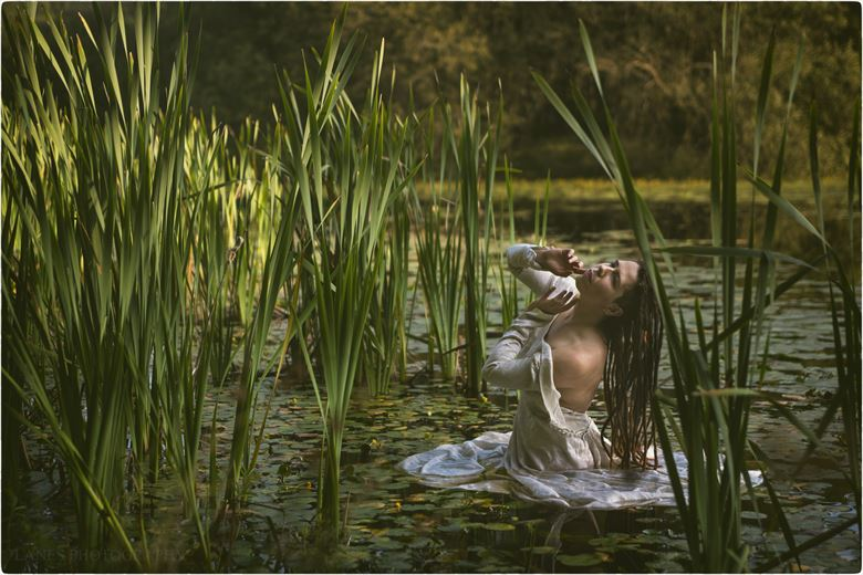 my water baby nature photo by photographer lanes photography
