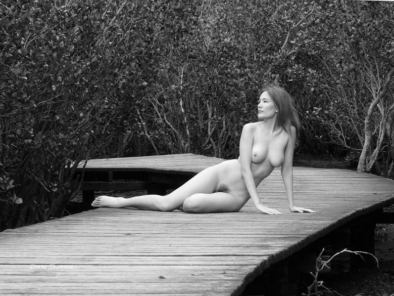 narie artistic nude photo by photographer dorne shannon