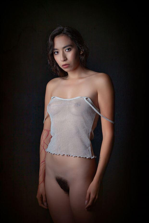 natalie artistic nude photo by photographer dream digital photog