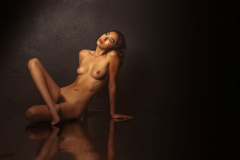 natalie artistic nude photo by photographer dream digital photog
