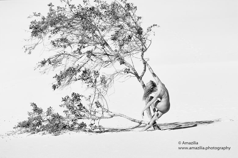 naturally nude in nature artistic nude photo by photographer amazilia photography