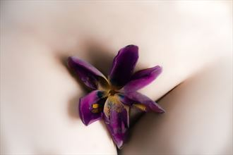 nature erotic artwork by artist serenity images
