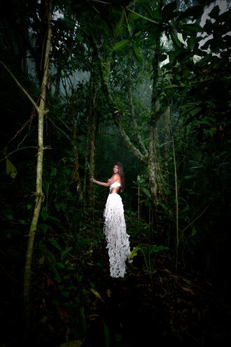 nature fantasy photo by photographer mx