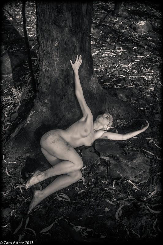 nature figure study photo by photographer camattree
