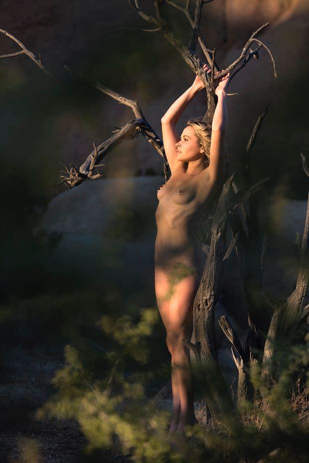 nature glamour photo by model missmissy