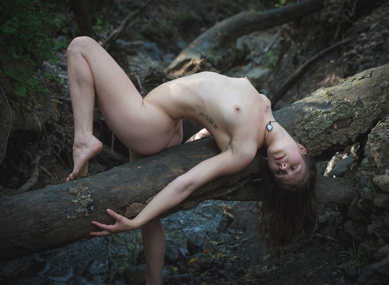 nature s grace artistic nude photo by model daniella sama