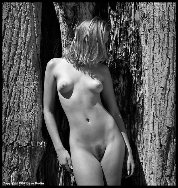 new mexico nude 1997 artistic nude photo by photographer dave rudin